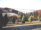colombelles-steinheim-6.jpg