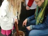 foire-aux-plantules-2013-11.jpg