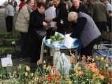foire-aux-plantules-2013-13.jpg